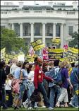 Activism photo